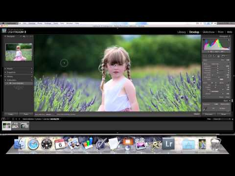 Video Photography Lesson - Brushes in Lightroom уроки lightroom 3 brush Photo-Brush